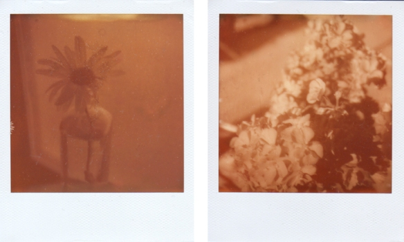 My first attempts at using Impossible Project film. My first exposure is on the left - and the best one from the batch is one the right. Photo: C. Hagemoen