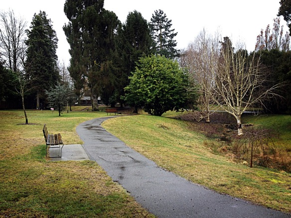 A cold day in the park. Park bench in Tatlow Park, Vancouver. Photo: C. Hagemoen
