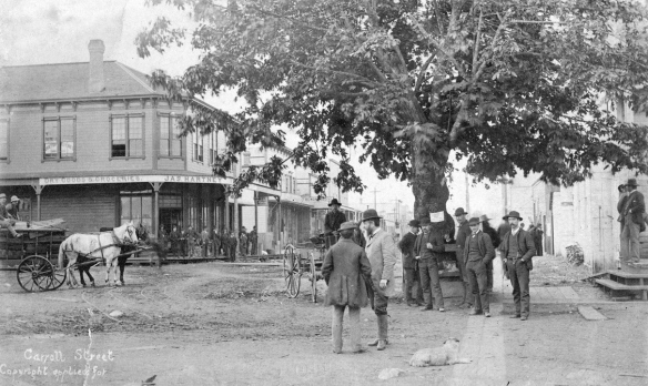 Photograph shows the Maple Tree at the corner of Carrall Street and Water Street - June 7, 1886. Photo: attributed to H.T. Devine,  City of Vancouver Archives - AM54-S4-: Str P83